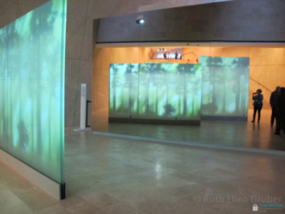 """The forest"" -- entry into the core exhibit"