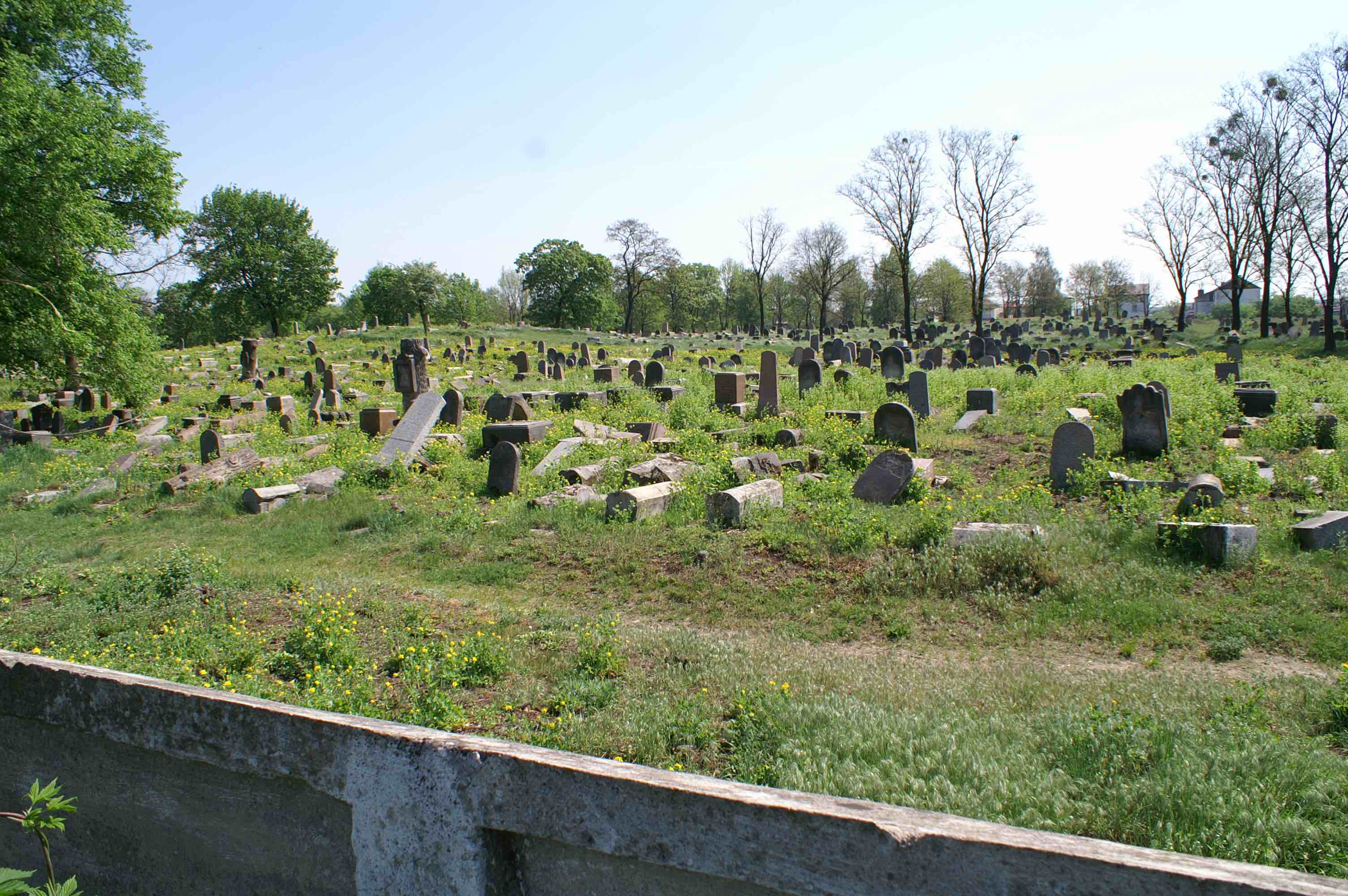 Bagnówka cemetery in 2007, before the renovation. Photo: Heidi M. Szpek
